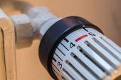 """Wärmebereich: Branche warnt vor """"erzwungener Umstellung"""""""
